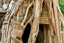 cambodia & burma - next trip