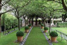 garden & outside