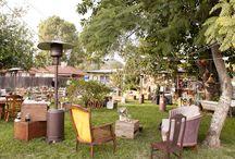 backyard / Backyard Weddings // Weddings At Home
