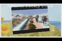 Santorini Donkey UNION / SANTORINI DONKEY UNION - The Official Donkeys Union of Santorini.Make Beautiful Tours with Donkeys at Santorini Island in Greece with The Donkeys of The Santorini Donkey Union. Donkeys.gr