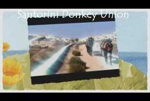 Santorini Donkey UNION / SANTORINI DONKEY UNION - The Official Donkeys Union of Santorini.Make Beautiful Tours with Donkeys at Santorini Island in Greece with The Donkeys of The Santorini Donkey Union. Donkeys.gr