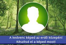 Debrecen Kánya Éva