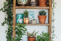 Bring the outside in / Inspiring kitchen greenery.
