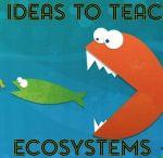 Science programs