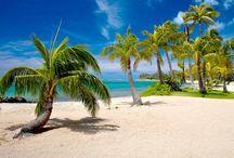 Oahu Wedding Locations / Get married on Oahu with Married with Aloha!