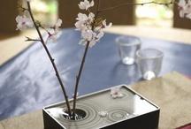 Ikebana / O belo - Ikebana a arte de encantar através da flor