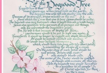 Dogwoods / by Sue Horne-Bates