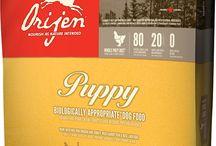 Dog Food Project