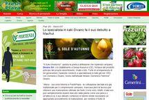 Parlano di noi / Una raccolta di articoli realizzati da varie testate e blogger su Divano Srl.