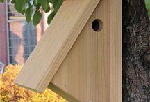 Fugle kasser