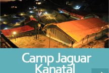 Kanatal Camp, Dhanaulti Camp / Camp little Jaguar kanatal camps offers you best camping in kanatal,dhanaulti camps near mussoorie luxury Swiss tents with all adventure activities.