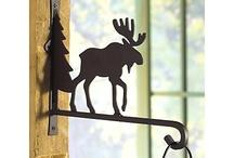 moose / by Barbi Conaway