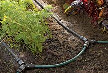 Garden row snip n drip