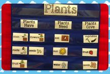 Weekly lesson plan supplements / by Maristella Webley