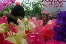 Printemps 2016 les bouquets de Rolande Fleuriste / Rolande votre fleuriste aux halles de Narbonne prépare dans son atelier des compositions florales originales, champêtres et modernes qu'elle vous propose sur son étal du mardi au dimanche inclus.
