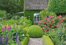 topiary bed