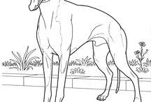 Dogs - art, drawings, doodles, prints
