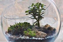 Dekoracje roślinne