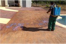 Hormigon Impreso / El pavimento de hormigon impreso es una arte! Es un pavimento duradero y resistnte!