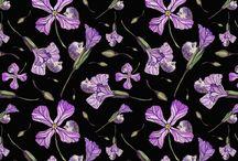 Spoonflower Fabrics - Christine May designs / Prickles and Petals. Christine May designs for Spoonflower fabrics