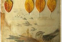 October / by Angela Rae Hoppel