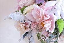 Бабочки, Цветочки