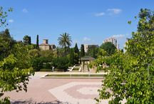Torrefiel & Benicalap / Zona Ronda Nord y Av. Peset Alexandre, Distrito de Rascanya. Horta Nord.