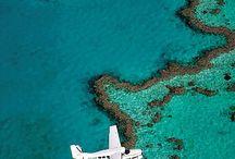 air trip