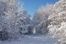 Príroda v zime.