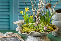 Spring Home Decorating / Spring home decorating ideas when you need a break from Winter!
