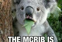 McRib LOLs
