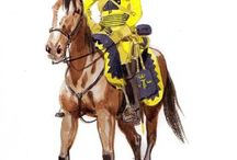 Swedish Napoleonic Army