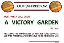 Gardening / Gardening / by Sandy Standen