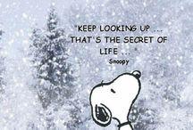 Snoopy / by Liz Culotta