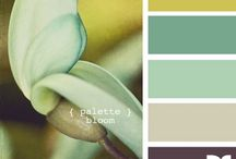 Hues / Creating color combos that look good together; combinations I like. / by Mary Morgan
