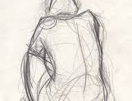 anatomia ceci