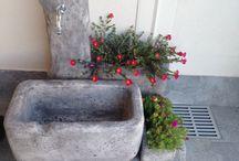 Gardens / Giardini