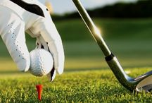 Online golf betting / Playdoit.com Online sports betting. PGA Golf betting, European Tour odds and Ryder Cup prices. ...