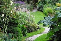 Beautiful Gardens / Photos of beautiful Gardens and planting schemes