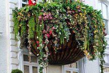 Çiçekli Balkonlar