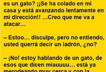 Frases y chistes