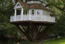 Maison dans le chêne