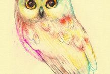 Owl  ( Bagoly)