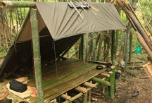 shelter think tank