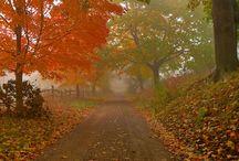 Seasons / by Kelsey Marie