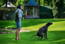 Tiere bei der Hochzeit / Ob geplant oder nicht: Hunde, Katzen oder Tauben sind auf einer Hochzeit immer ein Foto wert.
