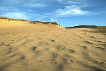 Art's Dune Tours ~ dune photos / tour the dunes