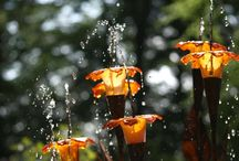 Water fountains & water fall reference / Water fountains in the form of Art & Zen / by Brien Nicholes