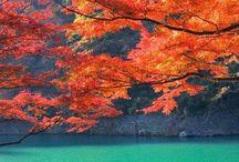Just Beautiful Photos of Japan