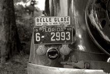 License Plates / by Jo Blankenship